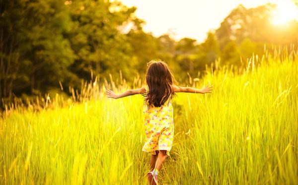 Надо любить жизнь больше, чем смысл жизни ▷ Socratify.Net
